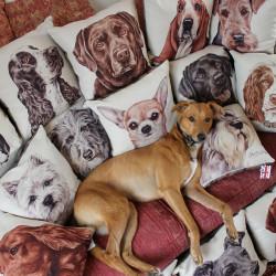 Charlie Cushions