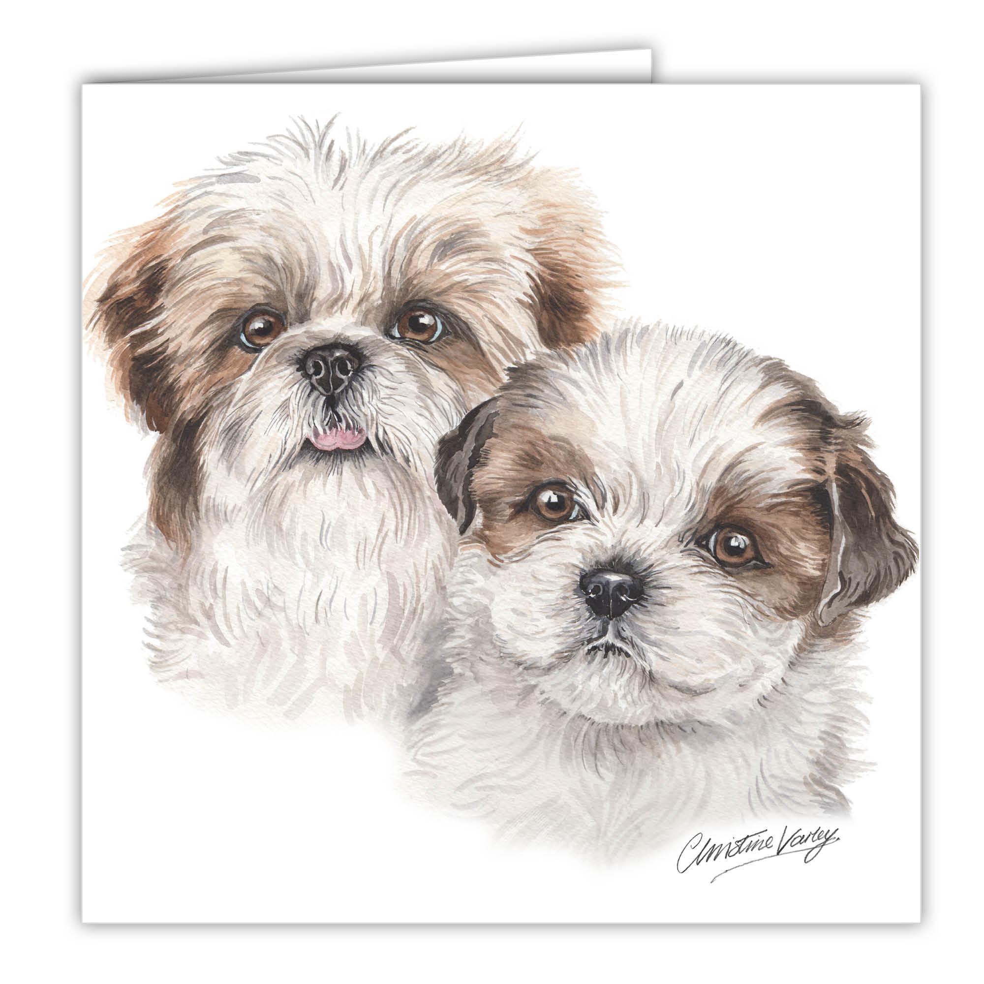 Shih Tzu Puppies Art Card Greetings Card Ac Pu11 Waggydogz