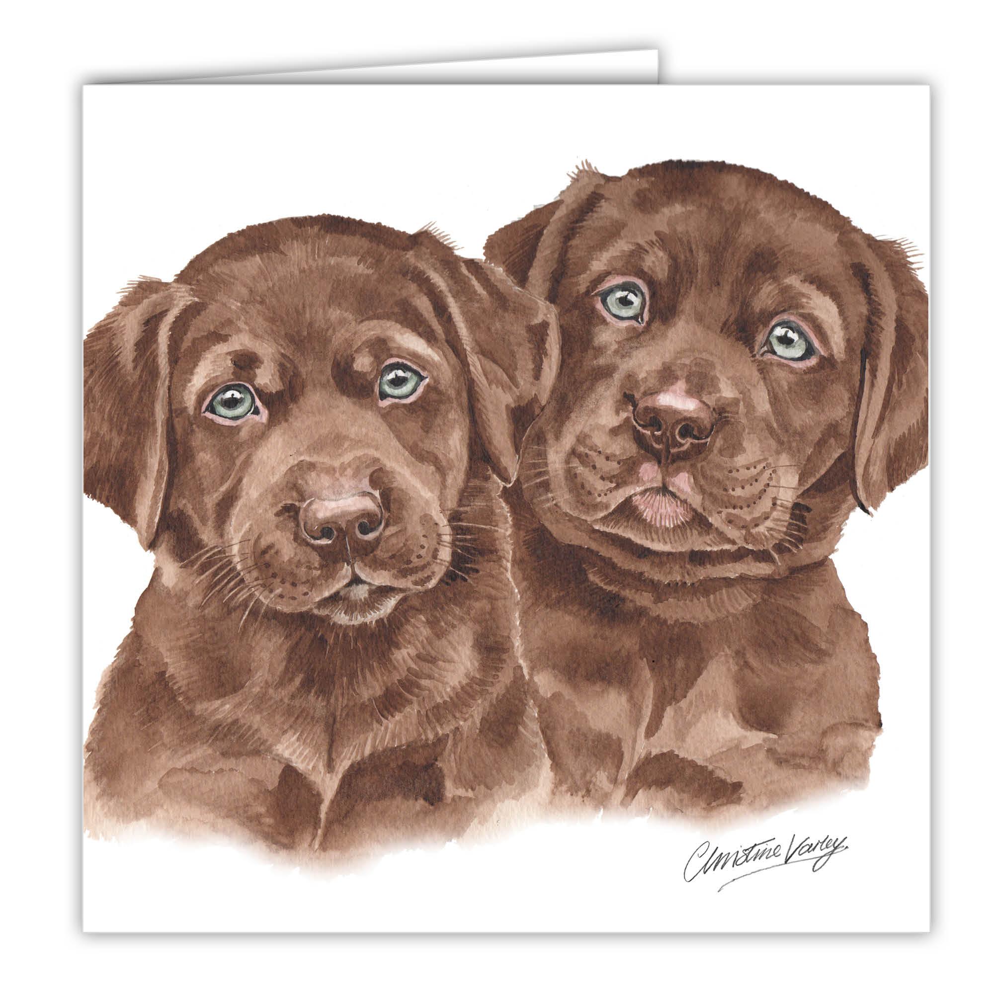 Chocolate Labrador Puppies Art Card Greetings Card Ac Pu13 Waggydogz