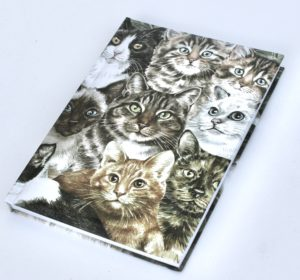 Cats Montage A5 Notebook / journal (VNB-MDG)