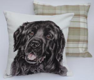 Newfoundland Dog Cushion Cus-211