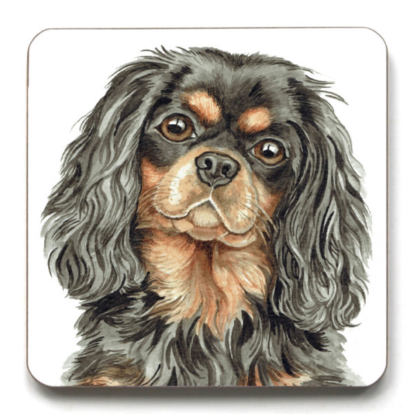 Tri Black And Tan Cavalier King Charles Spaniel Dog Breed (CST-259)