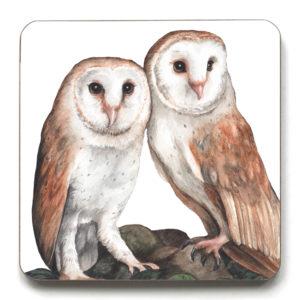 Barn Owl Pair