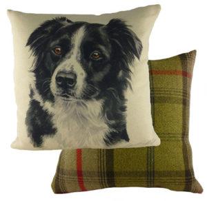 Border Collie Dog Cushion