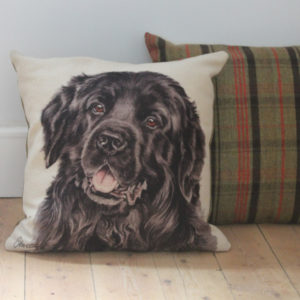 Newfoundland Dog Cushion