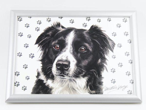 Border Collie Dog Lap Tray (VLT-154)