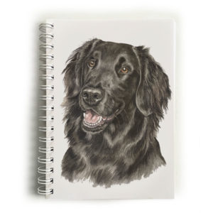 Flat-Coated Retriever Notebook
