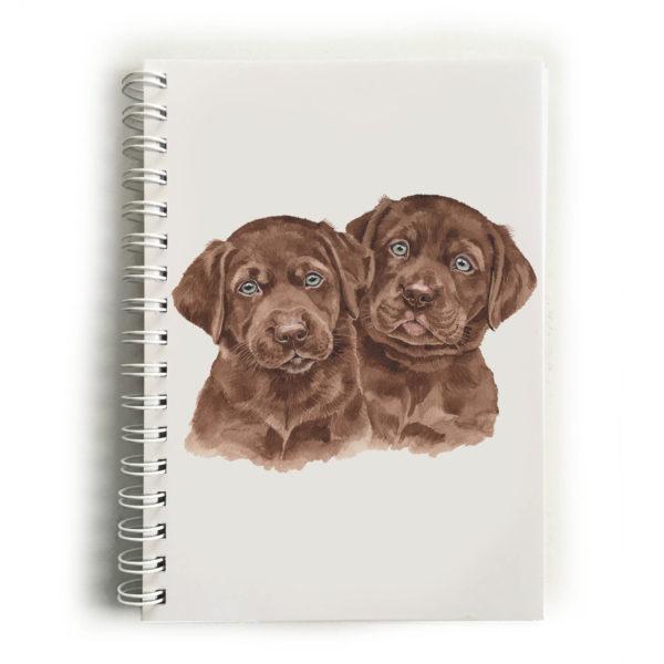 Chocolate Labrador Puppies Choc Labradors Notebook