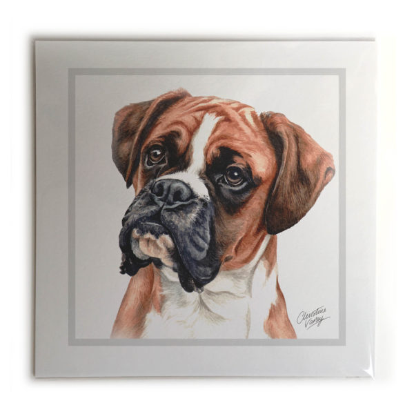 Boxer Dog Picture / Print