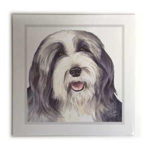 Bearded Collie Dog Picture / Print