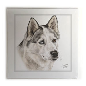 Husky Dog Picture / Print