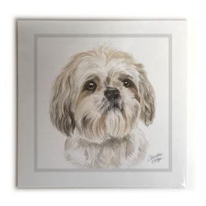 Shih Tzu Dog Picture / Print