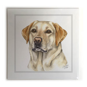 Golden Labrador Dog Picture / Print