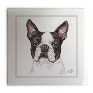 Boston Terrier Dog Picture / Print