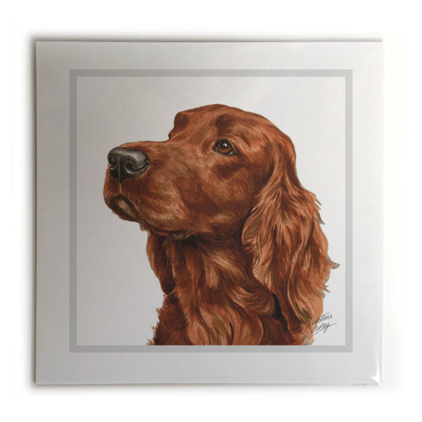 Irish Setter Dog Picture / Print