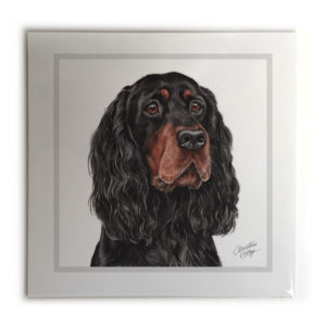 Gordon Setter Dog Picture / Print