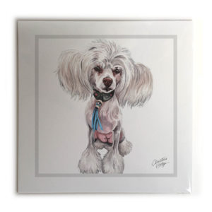 Chinese Crested Dog Picture / Print