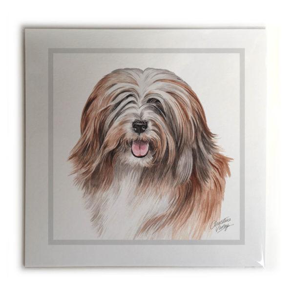Tibetan Terrier Dog Picture / Print