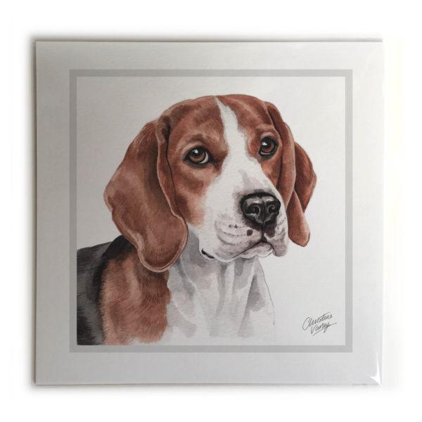 Beagle Dog Picture / Print