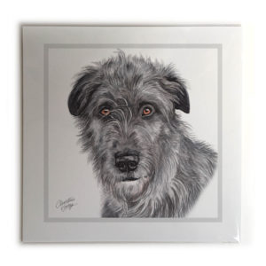 Irish Wolfhound Dog Picture / Print