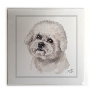Bichon Frise Dog Picture / Print