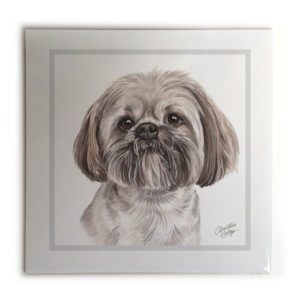 Lhasa Apso Dog Picture / Print