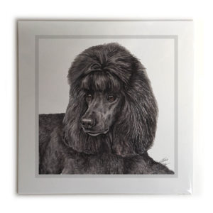 Black Poodle Dog Picture / Print
