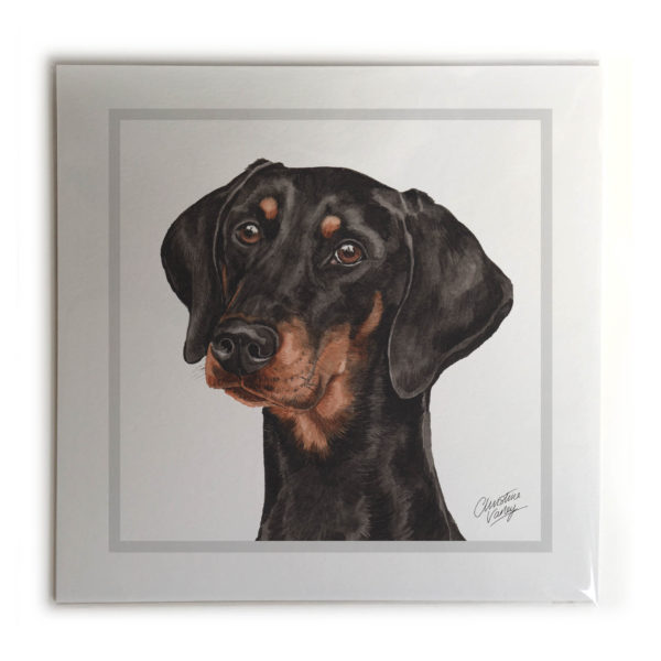 Doberman Dog Picture / Print