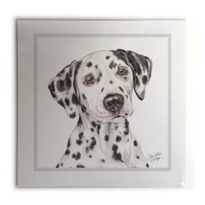 Dalmatian Dog Picture / Print