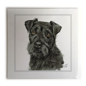 Patterdale Terrier Dog Picture / Print