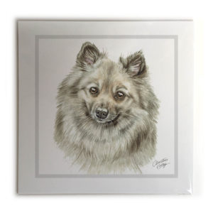 German Spitz Dog Picture / Print