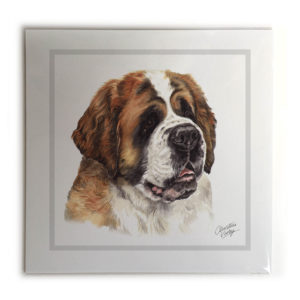 St. Bernard Dog Picture / Print