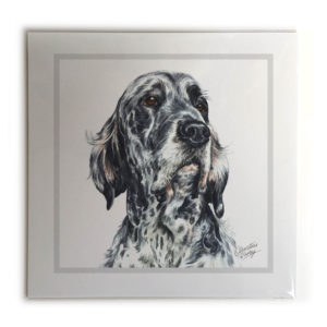 English Setter Dog Picture / Print