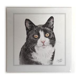 Black & White Cat Picture / Print