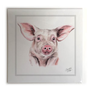 Pig  Picture / Print