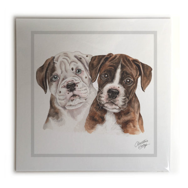 Boxer Puppies Dog Picture / Print